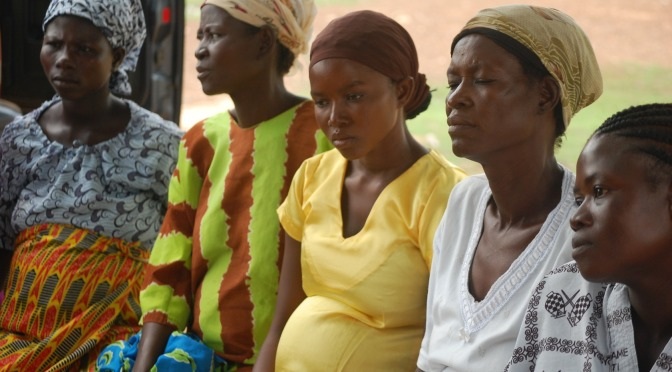 Mobile Midwife Launched in Nigeria